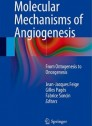 Molecular Mechanisms of Angiogenesis: From Ontogenesis to Oncogenesis [Hardcover]