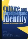 Culture and paradigplomatic identity