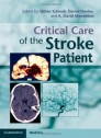 Critical Care of the Stroke Patient [Hardcover]